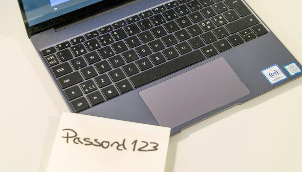 PASSORD: Sikkerhetseksperter fraråder at du benytter samme passord på flere tjenester på Internett. Foto: Shutterstock