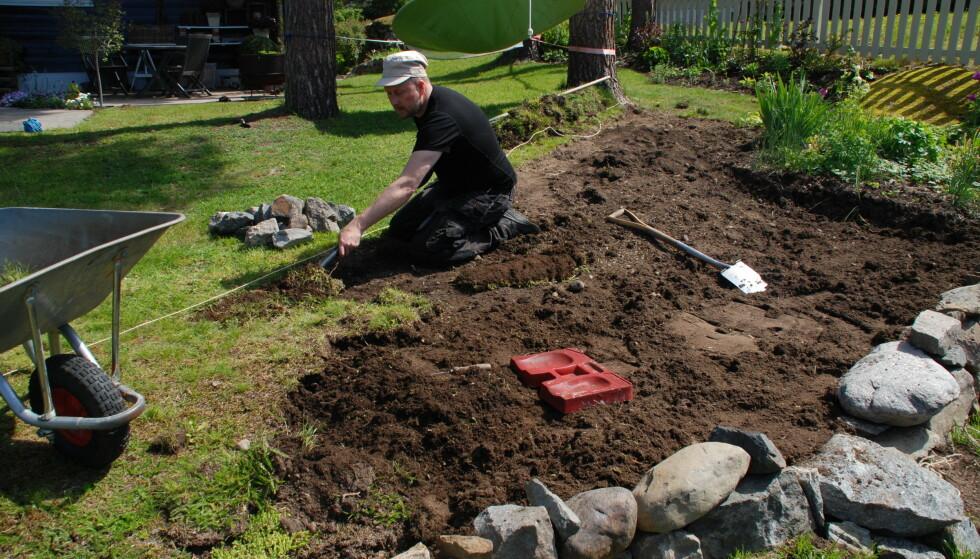 FØR: Når vi skal plante i hagen er det viktig at jorda er fri for rotugress. Godt grunnarbeid er nøkkelen også i hagen. Foto: Marianne E. Utengen.