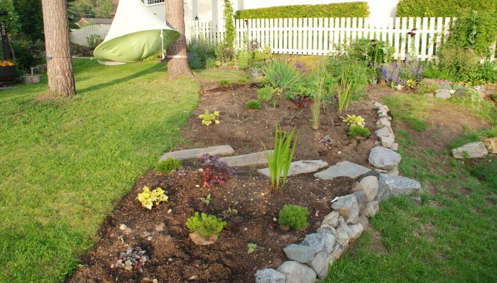 ETTER: - I en ny hage bør vi begynne med «taket og veggene» først; Trær, busker og klatreplanter. De bør danne basisen og rammen i hagen. Deretter kan vi plante inn det som skal gi farger og struktur, sier gartner Marianne E. Utengen. Foto: Marianne E. Utengen.