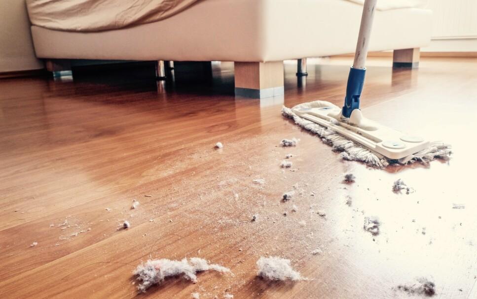 STØVETE: Støvet i huset inneholder en hel del svar på hvordan det står til med inneklimaet i hjemmet ditt. Illustrasjonsfoto: NTB Scanpix.