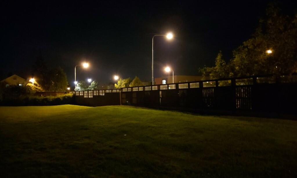 I MØRKET: Detaljene forsvinner i mørket – legg spesielt merke til gresset og trærne. Foto: Martin Kynningsrud Størbu