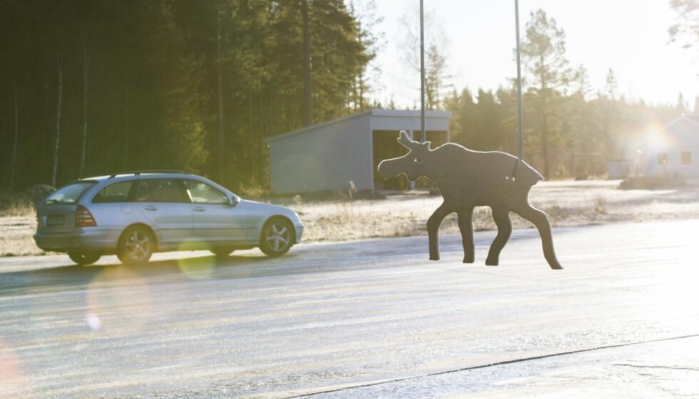 OBLIGATORISK: Glattkjøring er obligatorisk for å få sertifikat for bil. Nå har Statens vegvesen avslørt at nesten 200 elever ved en trafikkskole i Oslo-området ikke har gjennomført det obligatoriske sikkerhetskurset. Foto: Berit Roald/NTB Scanpix