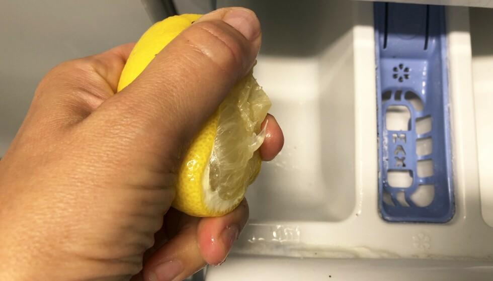 BLEKENDE SITRUSFRUKT: Ved å tilsette sitron sammen med vaskepulver skal dette kunne friske opp hvite plagg som har gulnet i fargen. I artikkelen under kan du se hvordan det gikk da vi testet trikset! Foto: Linn Merete Rognø.