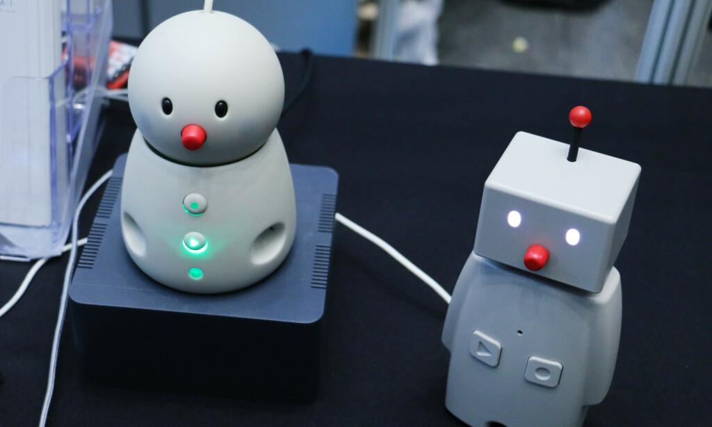 Kanskje kan denne roboten hjelpe med å kommunisere med de eldre som bort langt unna deg. Foto: Martin Kynningsrud Størbu