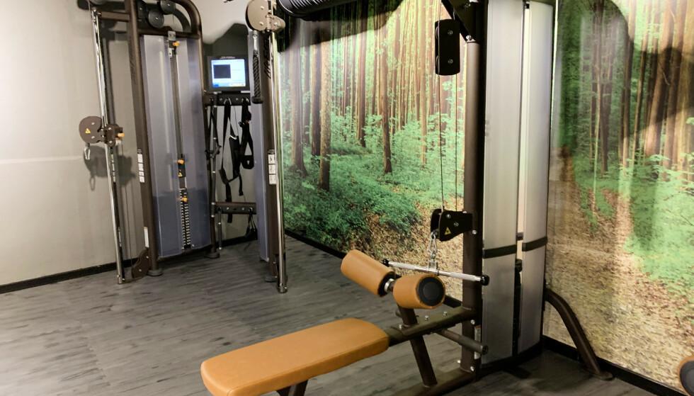 Stort treningsrom med mye utstyr, her et lite utvalg. Foto: Berit B. Njarga