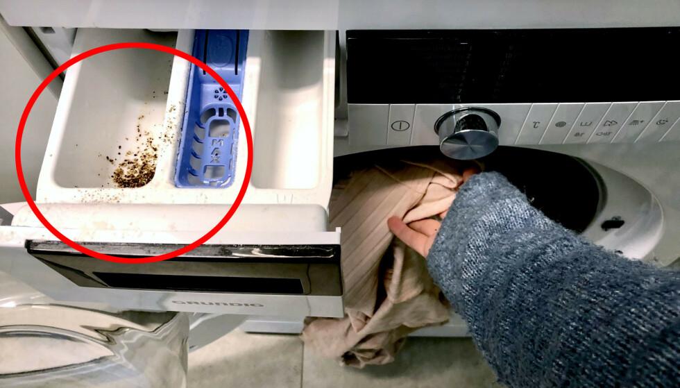 PEPPER MED VASKEMIDDELET: Å bruke pepper i vaskemaskinen skal kunne bevare fargen på klærne lenger, ifølge en rekke livsstilsblogger. Ekspertene mener imidlertid at det er andre ting som er mye mer effektivt. Foto: Linn Merete Rognø.