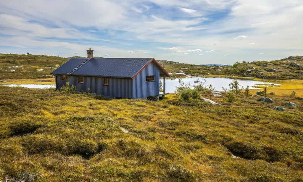 HØSTEN SETTER INN: Hytte på Eggedalsfjellet i Buskerud omgitt av fine høstfarger. Foto: Halvard Alvik/NTB scanpix.