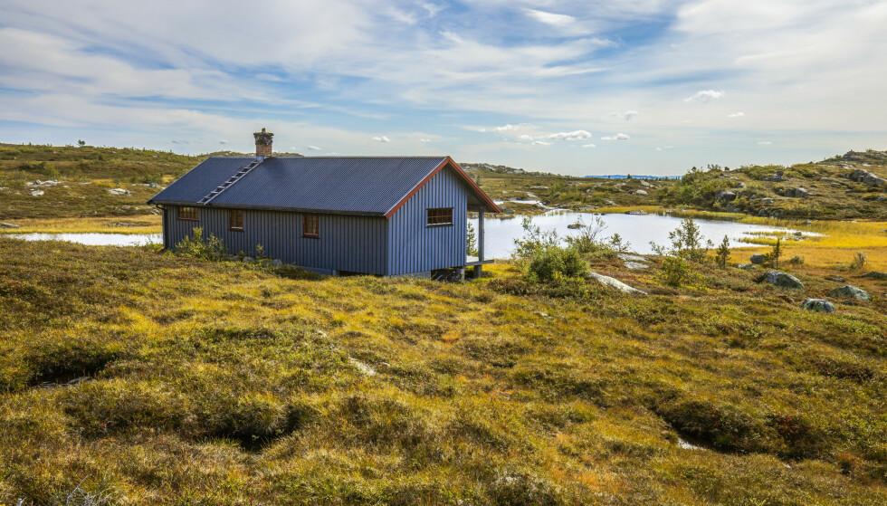 <strong>HØSTEN SETTER INN:</strong> Hytte på Eggedalsfjellet i Buskerud omgitt av fine høstfarger. Foto: Halvard Alvik/NTB scanpix.