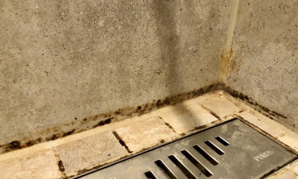 SKITNE FUGER: Det er nærmest umulig å unngå at flisefuger i dusjen blir misfarget og fulle av kalk. Dette kan være vanskelig å fjerne, men ikke umulig. Tipsene får du under! Foto: Linn Merete Rognø.