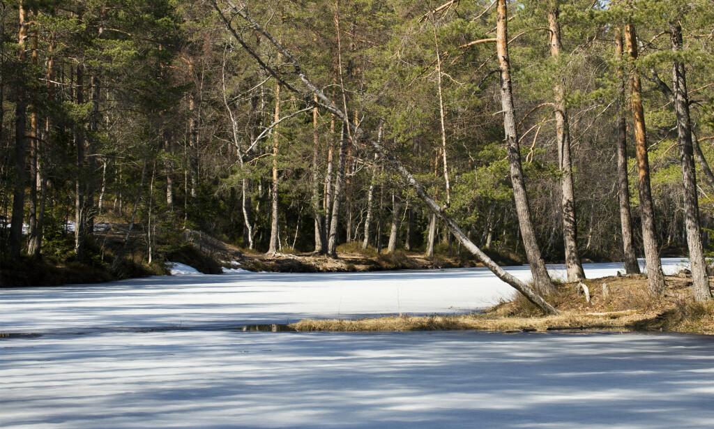 ISLAGT VANN? Du skal være sikker på at isen er tykk nok før du ferdes på den. Foto: Espen Bratlie/Samfoto