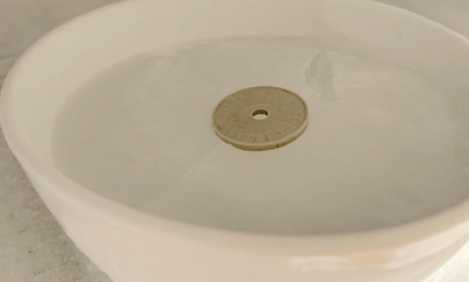 MED SAMME MYNT: Det kan være lurt å sette en liten bolle med vann i fryseren og legge en mynt på toppen når vannet har fryst, for å sjekke om fryseren fungerer optimalt. Hvorfor? Les saken og få svar. Foto: Arne Voll/Gjensidige.