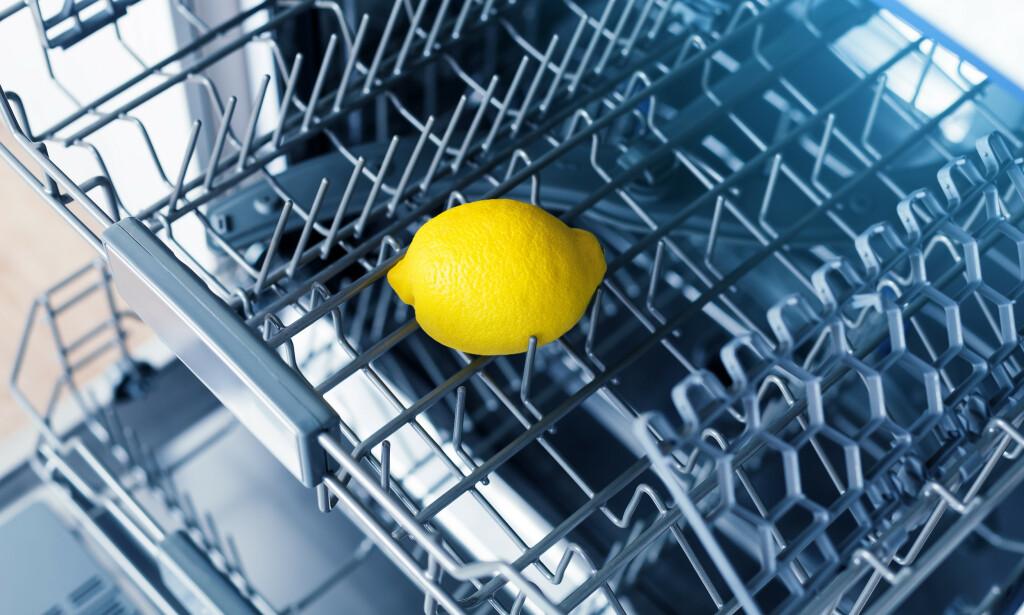 KIL DEN FAST: Del sitronen i to, kil den godt fast i hovedbeholder eller en annen plass i maskinen, og sett på oppvasken på det varmeste vaskeprogrammet. Foto: NTB Scanpix.