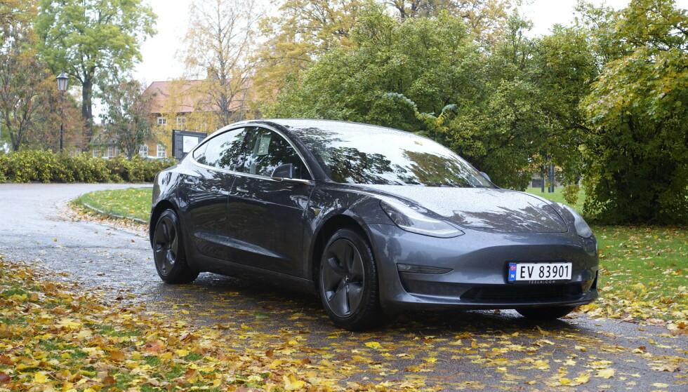HAR SATT EN AV FIRE I FARLIG SITUASJON: Bare det siste året har én av fire spurte vært i farlige situasjoner på grunn av stillegående elektriske biler, som Tesla Model 3 (bildet) - Norges klart mest solgte bil i 2019. Foto: Rune M. Nesheim