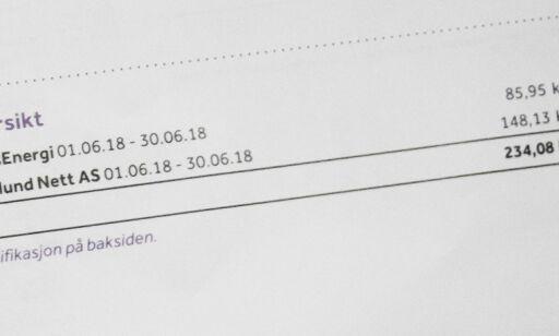image: Sparer du strøm, kan nettleia øke