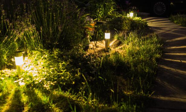 VIRKER STØRRE: Riktig lyssetting gjennom hagen kan få området til å se større ut, ifølge Haave. Foto: NTB Scanpix.