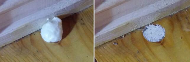 KJAPP LØSNING: Her har vi tettet kvisthullet med byggeskum. Så gjenstår det å se om det er en god nok løsning. Foto: Brynjulf Blix