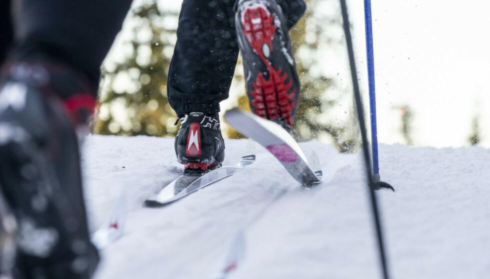 RETT UT I LØYPA: Med felleski er det lett å komme seg fort ut i skiløypa, som er et godt argument for å investere i slike ski. Men, det finnes gode argumenter for å heller ha smøreski også. Les journalistens og ekspertenes råd i saken under. Foto: Per Ervland.