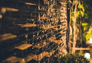 Lys opp hagen i vintermørket