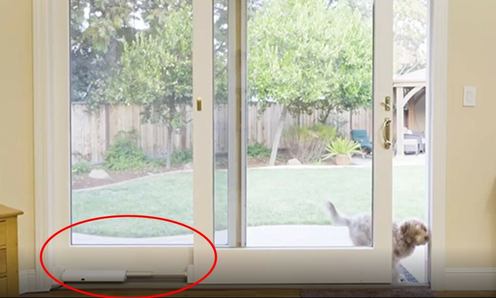 ÅPNER AUTOMATISK: Hunder og katter vil gjerne ut og inn hele tiden. Her er løsningen på problemet. Foto: Wayzn