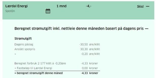 <strong>DU FÅR FIRE KRONER:</strong> Klikker vi oss inn på ett av strømselskapene med negativ pris, ser vi at et påslag på -30,50 øre per kilowattime akkurat denne dagen er høyere enn spotprisen per kilowattime, hvilket betyr at strømkunden får fire kroner i lomma. Foto: skjermdump.