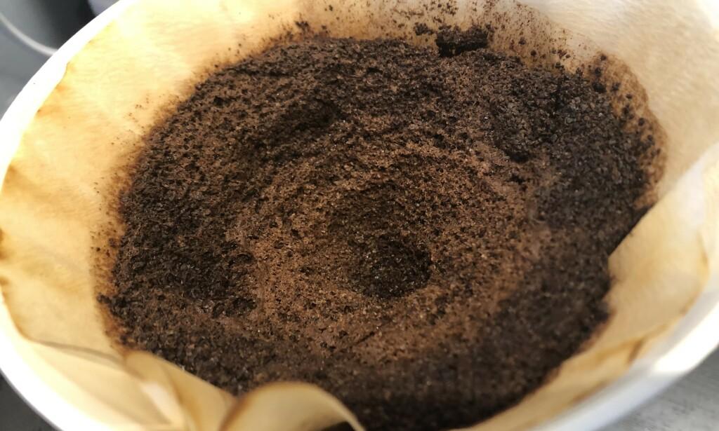 NYTTIG: Kaffegruten kan brukes til utrolig mye! Tipsene får du i artikkelen under. Foto: Linn Merete Rognø.