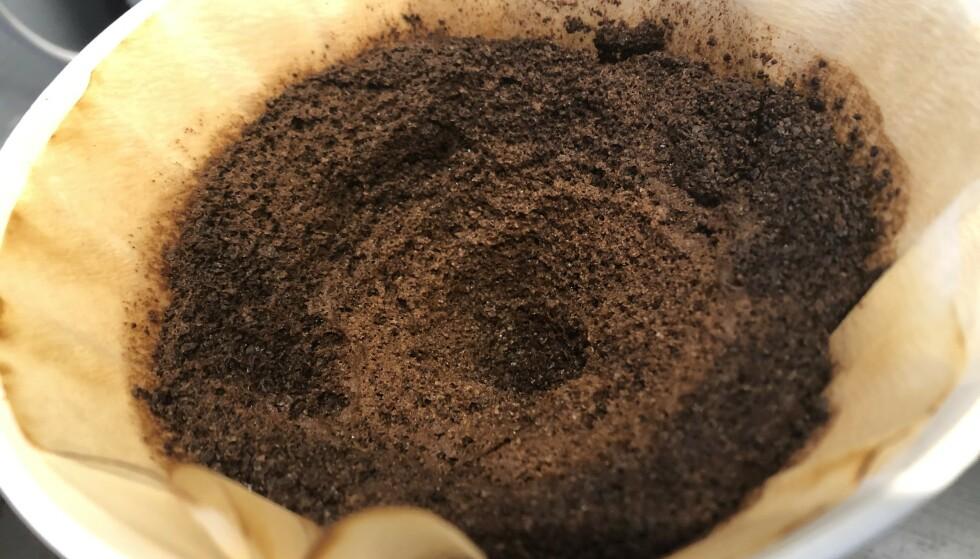 <strong>NYTTIG:</strong> Kaffegruten kan brukes til utrolig mye! Tipsene får du i artikkelen under. Foto: Linn Merete Rognø.
