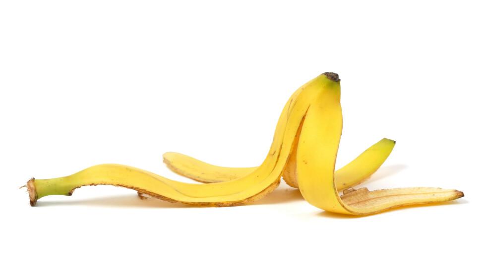 GULL FOR HAGEN: Det er mange gode grunner til å ta vare på bananskallet - i alle fall hvis du har lyst til å ta vare på hageplantene. Foto: NTB Scanpix.