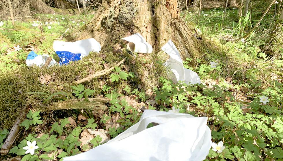 FORSØPLING AV SKOG OG MARK: Friluftsorganisasjonene frykter at flere folk, og kanskje spesielt uerfarne turfolk, kan føre til en økning i forsøpling av skog og mark. Hva gjør du for eksempel med dopapir når du har vært på do i skogen? Svaret på hva du BØR gjøre, kan du lese i artikkelen. Foto: Kristin Sørdal