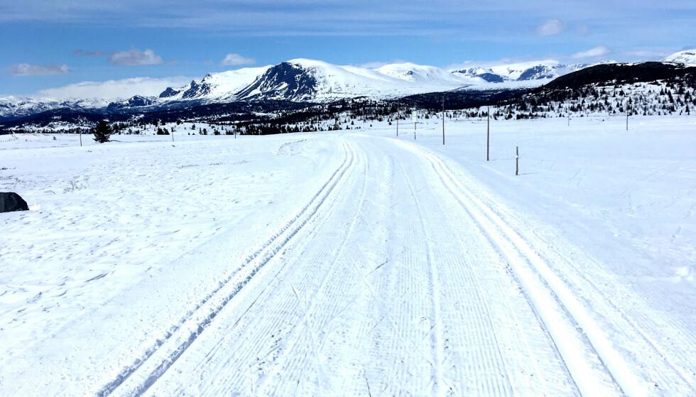 GOLSFJELLET: Slik ser det ut på Golsfjellet 13. mai. Fire mil med preparerte skiløyper. Foto: Knut Nibstad