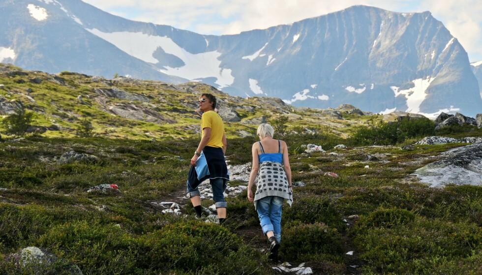TURTIPS: Trenger du tips til hvor du kan gå tur i norsk natur i sommer, finnes det flere apper som kan hjelpe deg. Foto: Privat