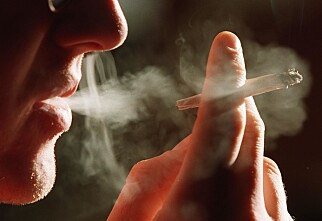 Foreslår røykeforbud i bilen