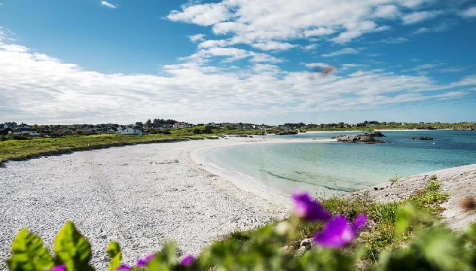 RENE STRENDER: Åkrasanden i Karmøy kommune er en av de 17 norske strendene som er tildelt Blått Flagg for sommeren 2020. Dette betyr blant annet at du kan være sikker på at stranden har rent vann, rene omgivelser og tilstrekkelige toaletter som rengjøres regelmessig. Foto: Åkrasanden – Frilufsrådet Vest