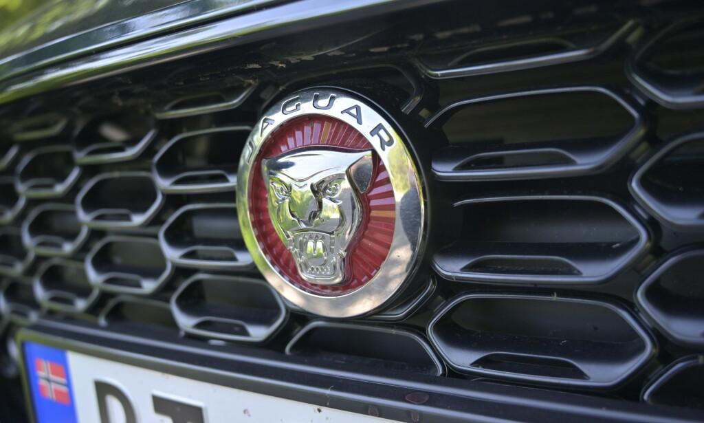 BLACK PACK: Vår utgave er dyppet i klassisk Racing Green og har utstyrsgrad R-Rynamic med blant annet kledelige 19-tommere, og svarte detaljer blant annet rundt grill, luftutslipp og alle dekaler untatt Jaguaren i fronten. Foto: Rune M. Nesheim