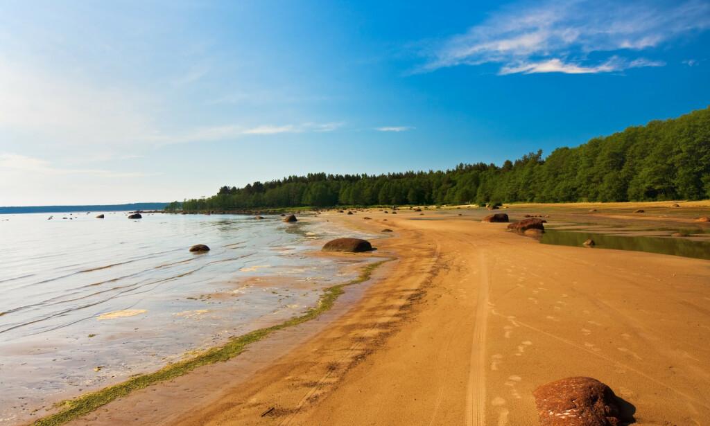 FINLAND: Finland kan også friste med strender. Og hit er det ingen reiserestriksjoner. Foto: Shutterstock/NTB scanpix