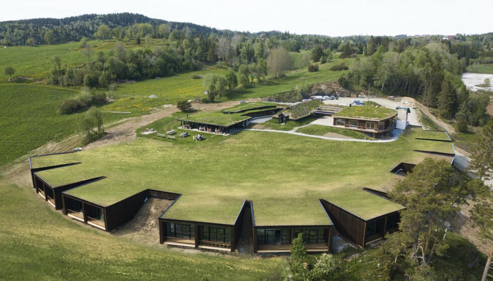 ØYNA: Kulturlandskapshotellet Øyna på Inderøy i Trøndelag åpnet 12. juni. Øyna er en del av «Den Gyldne Omvei» og tilbyr mat fra lokale produsenter. Hotellet består av 18 enkeltstående rom bygd inn i bakken - og gjør det til landets første «kulturlandskapshotell». Foto: Øyna
