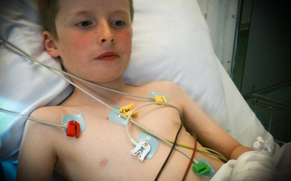 HAVNET PÅ SYKEHUS: Sommeren 2012, da Levi Lahr var syv år gammel, spiste han en bit av planten tyrihjelm. Han ble alvorlig forgiftet og hasteinnlagt på sykehus. Foto: Privat.