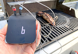 Gir perfekt grillmat - men dessverre mye krangling