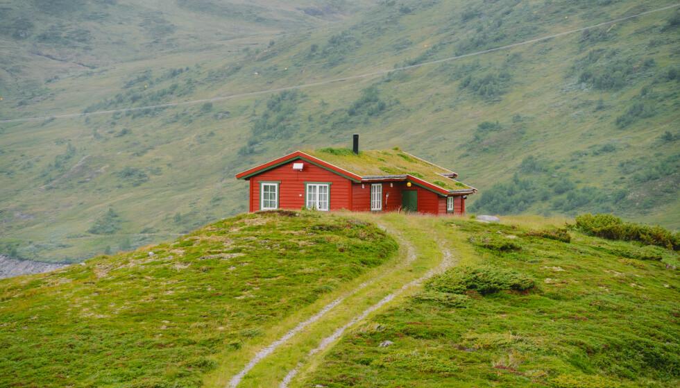 BILLIG KAN BLI DYRT: Har du kjøpt eller vurderer du å kjøpe en hytte uten innlagt vann og avløp? Da bør du lese denne saken. Foto: NTB Scanpix