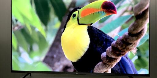 image: Stor TV på lavbudsjett