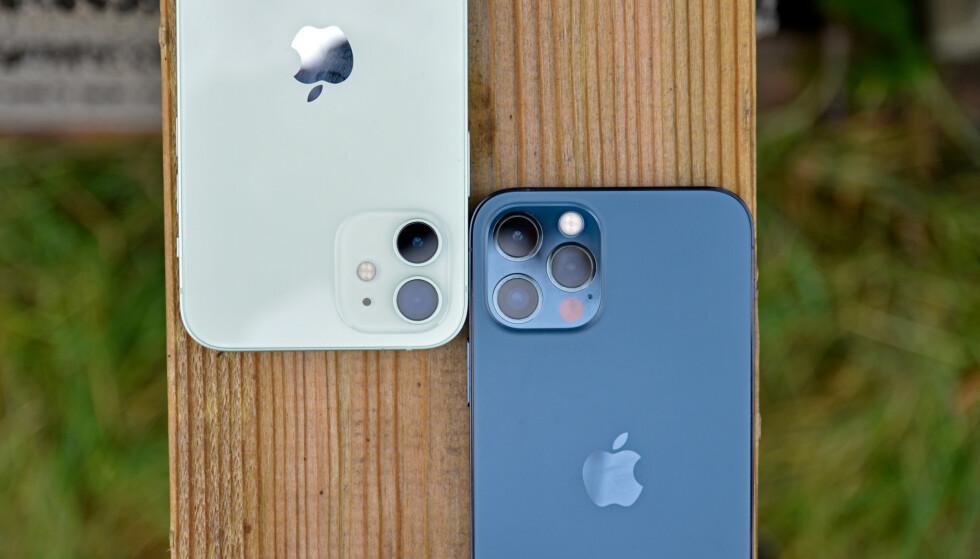 2 AV 4: iPhone 12 og 12 Pro er de to første iPhone-modellene som kommer i butikk, med salgsstart 23. oktober. For de to siste, Max og Mini, må du vente tre uker ekstra. Foto: Pål Joakim Pollen