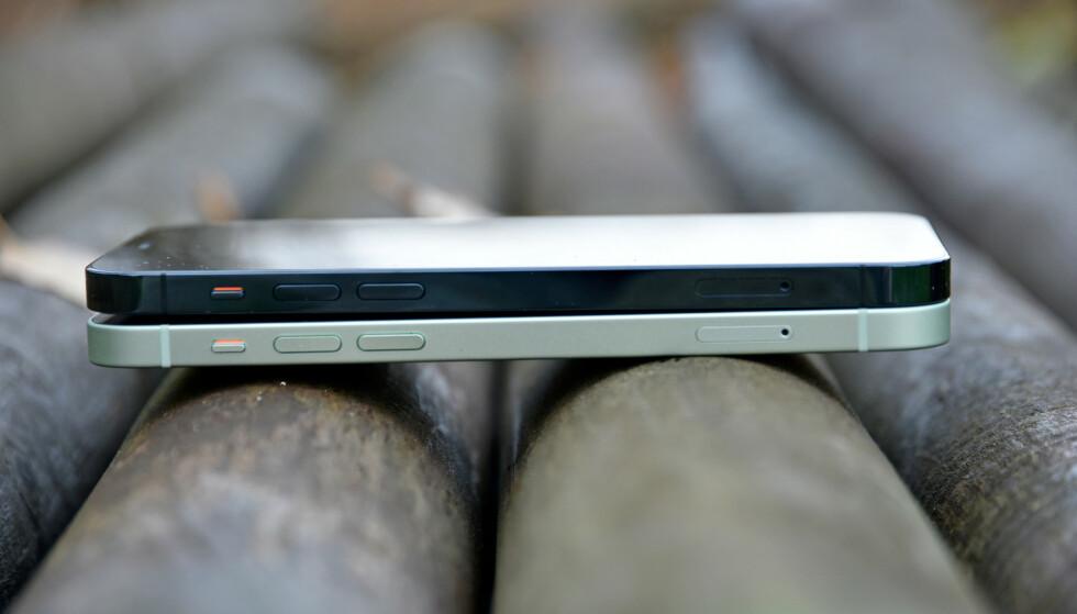 LIKE STORE: iPhone 12 og 12 Pro er akkurat like store, med 6,1 tommers skjerm. Deksler passer derfor begge telefonene, mens de to andre nye iPhone-modellene har andre størrelser. Foto: Pål Joakim Pollen