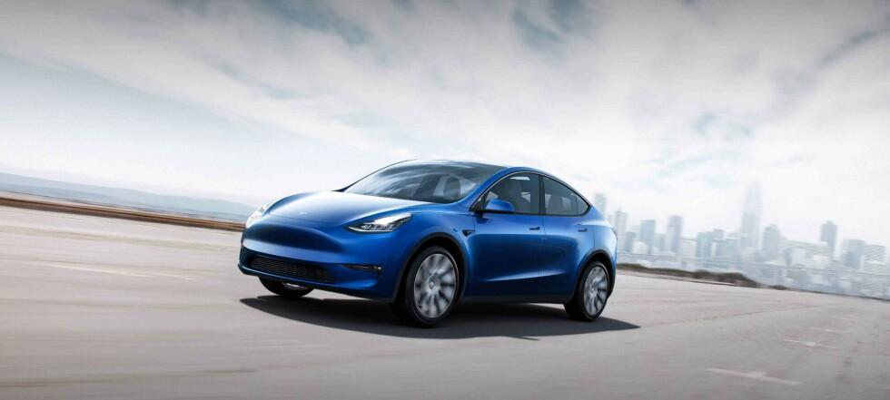 Tesla på bunn