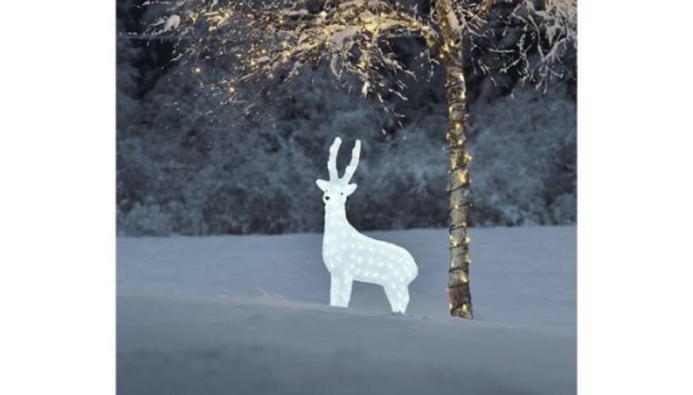 Julelysene som får naboen i prat