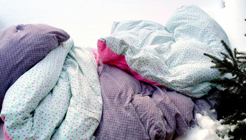 KULDA VASKER: Benytt kulda til å vaske sengetøy, tepper og annet. Hiv det ut i snøen og la kulda gjøre jobben. Aller helst bør det være under 10 minusgrader, for å ta knekken på midden. Og husk: Du må riste sengetøyet godt etterpå. Foto: Kristin Sørdal