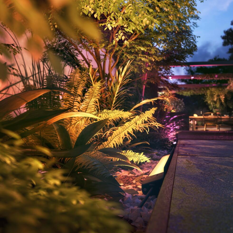 AMARANT: Den nye LED-stripen kan lyse opp utendørsområdene. Foto: Signify