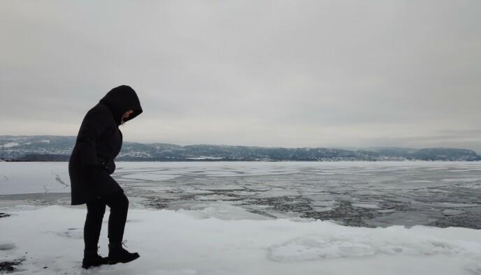 Et av de bedre bildene vi har tatt med Razr 5G ... i et snøhvitt og tåkete Lier.
