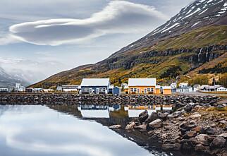 Island bortimot smittefritt