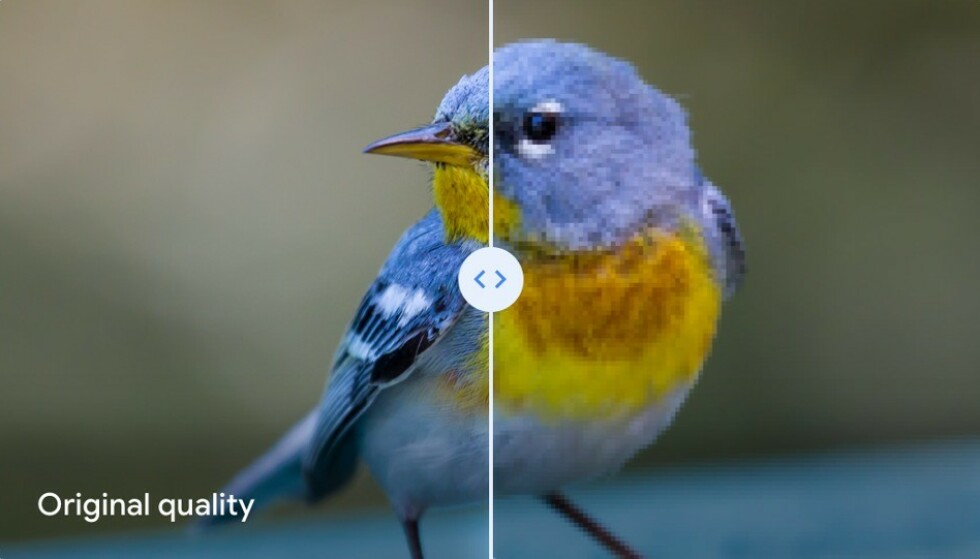 Det er dette bildet Google bruker i e-posten for å vise forskjellen mellom original og høy kvalitet. Foto: Google