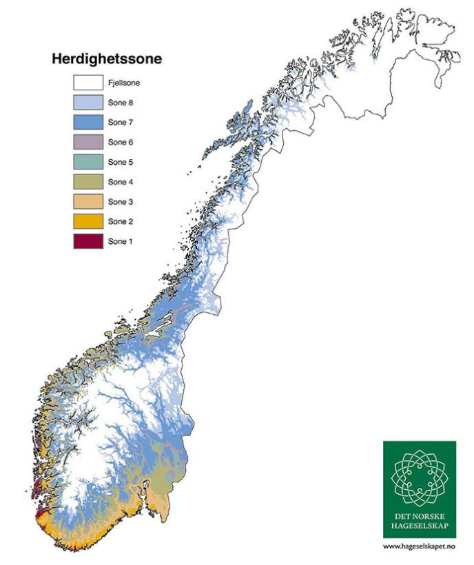 KLIMASONER: Norge er delt inn i åtte klimasoner, med tilhørende herdighetstall H1 til H8. I tillegg til disse kommer den barske fjellsonen, markert i hvitt på kartene. H1 er de mildeste delene av landet, mens H8 er de delene av landet med tøffest klima. Foto: Plantasjen.