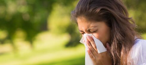 – Kan ikke be en million allergikere ta coronatest